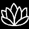 web logo (1)